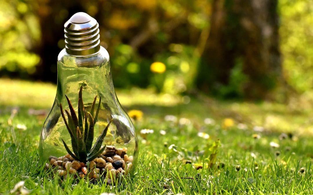Energía renovable para la vivienda y el jardín